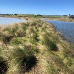 Lakes & Waterways Report